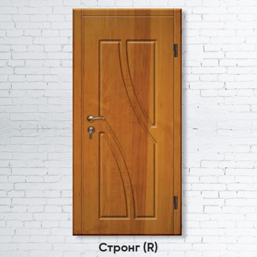 Входные двери Стронг R