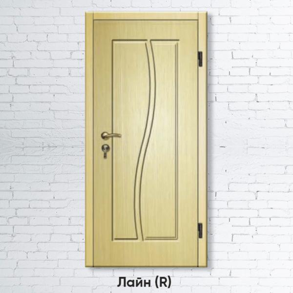 Входная дверь Лайн R